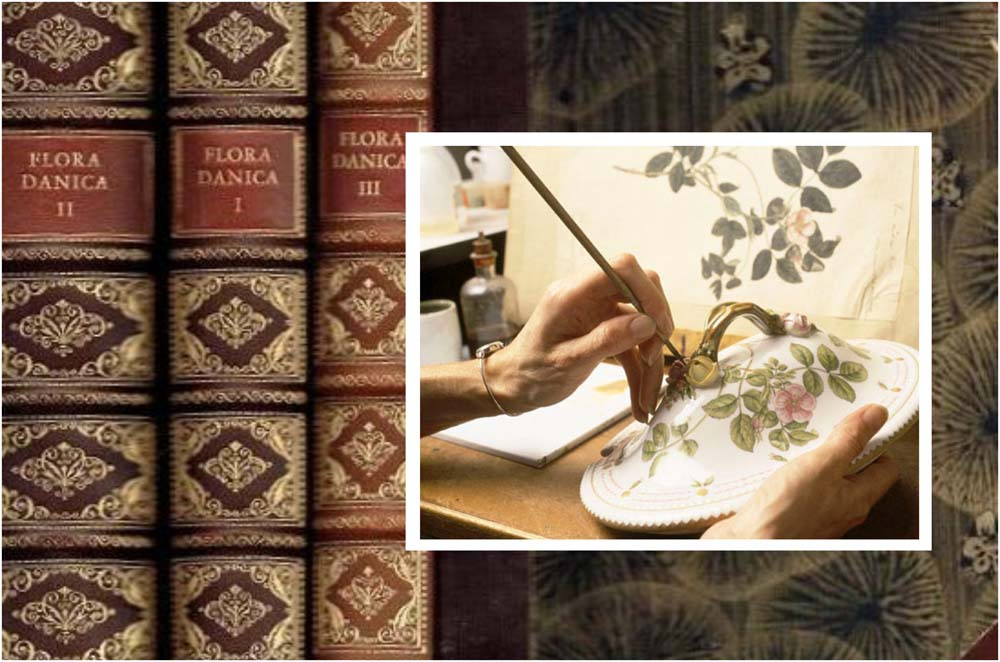 """Nuostabaus porceliano komplekto """"Flora Danica"""" istorija prasideda Apšvietos amžiuje (XVII- XVIII) ir visai kitaip nei daugybės kitų porceliano indų. Taigi tas laikmetis dar vadinamas """"proto amžiumi"""", žmonės nori žinoti, pažinti, suprasti, išaukština protą ir racionalumą. Klesti kultūra ir švietimas, daug dėmesio pradedama skirti gamtos reiškiniams ir pažinimui. Danijos karalius Frederikas V įpareigoja suburti komandą ir sukurti Danijos laukinės gamtos augalų atlasą, kad ilgainiui juos būtų galima ištirti ir šiuos gamtos turtus panaudoti. Koordinuoti šią veiklą 1752 m. pavedama botanikui Georgui Kristianui Ėderiui. Po 9 metų 1761m. jis pateikia pirmąjį augalų atlaso tomą. Kiek darbo reikėjo įdėti, kad tuo metu atsirastų spalvotas ir tikslus augalo piešinys knygoje sunku ir pasakyti, jau nekalbant apie aprašymą. Pirmiausiai tiksliai iš herbariumo buvo piešiamas augalas, po to lengvai spalvinamas, tikrinama, ar atitinka netūralų augalą ir tada spalvinamas akvarele ar guašu jau galutinai. Drauge su G.K. Ėderiu prie šio darbo triūsė be galo talentingas iliustratorius iš Vokietijos Martinas Riosleris. Abiejų darbas buvo tiesiog juvelyrinis ir be galo atsakingas - piešiniai turėjo būti tikslūs iki paskutinės kuokelės - jų laukė visas botanikos mokslo pasaulis. Taigi tik kai atsirasdavo tiksli augalo akvarelė, ji būdavo siunčiama graveriui į Kopenhagą. I atlaso tomo iliustracijoms atspausdinti buvo sukurta 60 nuostabių graviūrų ant varinių plokštelių ir gandai apie šį darbą netruko pasklisti po visą pasaulį. Ateinančius 10 metų (1761–1771m.) G. K. Ėderis išleidžia dar 10 atlaso tomų ir kiekvienam iš jų iliustruoti taip pat sukuriama 60 varinių graviūrų. Vėliau šio botaniko darbą tęsia kiti, kol per 122 metus kolekcija išauga į įspūdingą 3240 gėlių ir augalų kolekciją, sudėtą į 51tomą (ir dar 3 papildomus) pavadinimu """"Flora Danica"""" ir baigiama 1883. Apie šios enciklopedijos atsiradimą galima būtų kalbėti labai ilgai ir įdomiai, nuo jos vėliau prasidėjo daug svarbių mokslui d"""